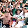 "Colorado State University's Chris Robinson jumps into a crowd of CSU fans to celebrate victory during the Rocky Mountain Showdown against the University of Colorado on Saturday, Sept. 1, at Sports Authority Field at Mile High in Denver. CSU won the game 22-17. For more photos of the game go to  <a href=""http://www.dailycamera.com"">http://www.dailycamera.com</a><br /> Jeremy Papasso/ Camera"