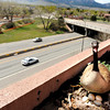 "Table Mesa Pedestrian Bridge Construction001.JPG A goose protects a nest full of eggs on Tuesday, April 10, on the top floor of a parking garage where a pedestrian bridge is being built. RTD is going to build a pedestrian bridge that will span US Highway 36 to the parking garage. For a video of the goose go to  <a href=""http://www.dailycamera.com"">http://www.dailycamera.com</a><br /> Jeremy Papasso/ Camera"