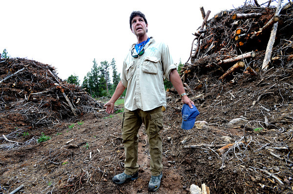 SLASH.jpg Court Dixon expresses his frustration with the slash piles that dot the woods near his home outside Ward Colorado on Monday July 9, 2012.<br /> Photo by Paul Aiken