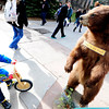 BEAR.jpg Henry Gabriel, 4, goes face-to-face with a bear on the University of Colorado Boulder Campus on Tuesday. The stuffed bear was part of an outreach exhibit for the City of Boulder Open Space and Mountain Parks.<br /> Photo by Paul Aiken / The Camera / January 31, 2012