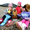 "FREDDY.jpg From left to right Evelyn Gustafson, 6, Margaux Daniel, 3, and Ruby Gustafson, 3,  pose with Flatiron Freddy at Chautauqua during the annual groundhog day celebration and presentation at the park on Thursday morning February 2, 2012. For a video of the event go to  <a href=""http://www.dailycamera.com"">http://www.dailycamera.com</a><br /> Photo by Paul Aiken / The Camera"