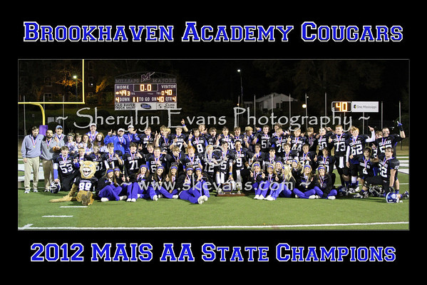 20121124-2012 State Champs 20 x 30