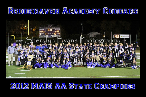 State Champion Poster - Print at 20 x 30 or 10 x 15