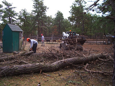 Photos from November 2012 Chainsaw Crew - Hurricane Sandy