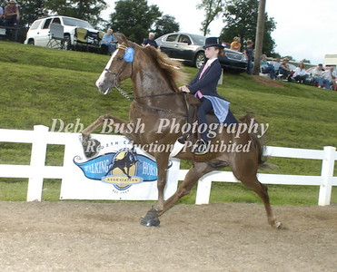 CLASS 7  WALKING PONY YOUTH SPECIALTY