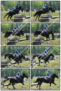 Sometimes you might want us to do up a series of photos as a custom collage.... This one is 2 over 4 or  8-up. It is formatted 12x8 or proportional.