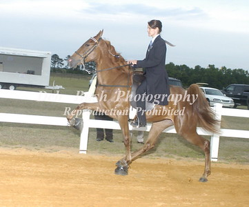 CLASS 28  TWO YR OLD AMATEUR SPECIALTY