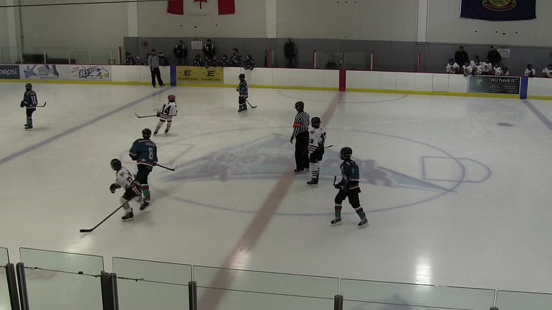 Game 5 vs Tacoma Rockets, 1st period, Part 1 of 2