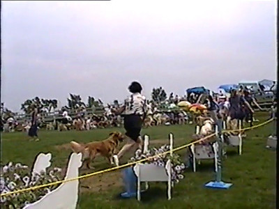 1999 GRCC National Specialty Video