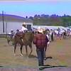 05 Duffer Nick leadline 3rd AC Fair Aug 1989