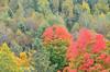 DSC_0016 Oct 2 2012