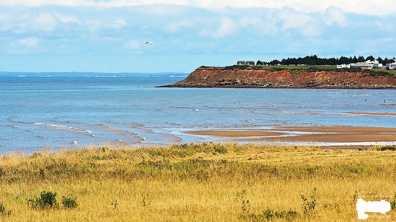 Murray Beach 01
