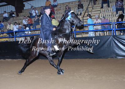CLASS 6  AMATEUR OWNED AND TRAINED SPECIALTY
