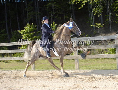 CLASS 17  50 & OVER AMATEUR SPECIALTY