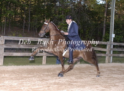 CLASS 26  PERFORMANCE AMATEUR OWNED & TRAINED SPECIALTY
