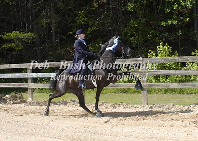 CLASS 5 WALKING PONIES ADULT AMATEUR SPECIALTY