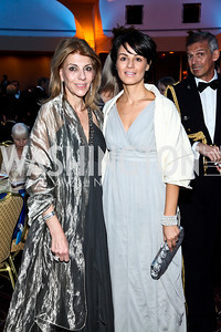 Vivian Cardia, Lucia Pasqualino. Photo by Tony Powell. 2012 NIAF Gala Awards Dinner. Hilton Hotel. October 13, 2012