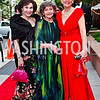 2012 Phillips Collection Gala : Photos by Tony Powell