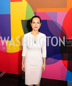 Shazia Skikander,November 30,2012,50th Anniversary of Arts in the Embassies,Kyle Samperton