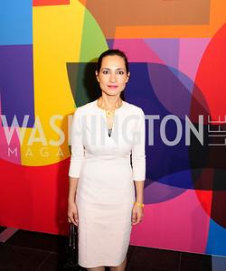 Shazia Skikander,November 30,2012,50th Anniversary of Arts in the Embassies,Kyle Samperton