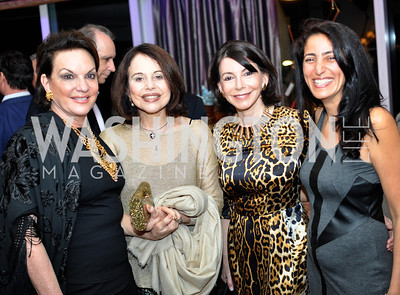 Grace Bender, Maria Ignes Barbosa, Joann Mason, Rose Carter, Hilda and Arturo Brillembourg host a cocktail reception to kick off Art Basel Miami. Wednesday, December 5, 2012. Photo by Ben Droz.