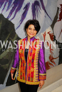 Shamin Jawad,February 24,2012,Aschiana Gala at the Residence of the Ambassador of the Netherlands,Kyle Samperton