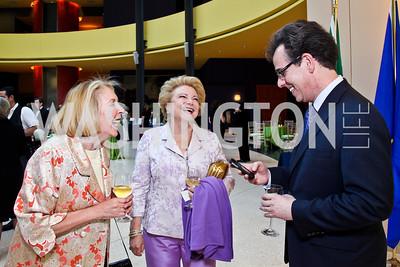 Gilan Corn, Mary Mochary, Neale Perl. Viva la Musica Gala. Photo by Tony Powell. Italian Embassy. May 19, 2012