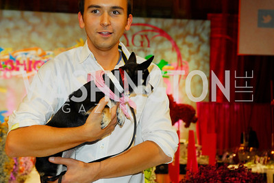 Tommy McFly,April 14,2012,Fashion For Paws,Kyle Samperton