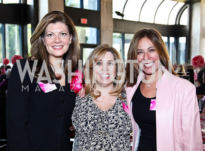 Kristin Bodenstedt, Christina Mulvihill, Shelley Hymes. Photo by Tony Powell. 'La Vie En Rose' Luncheon. French Embassy. October 10, 2012