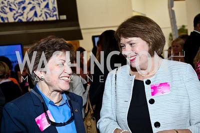 Ann Berkey, Creigh Agnew. Photo by Tony Powell. 'La Vie En Rose' Luncheon. French Embassy. October 10, 2012