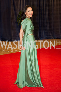 Ann Curry. White House Correspondents Dinner Red Carpet at the Washington Hilton.  Photo by Ben Droz