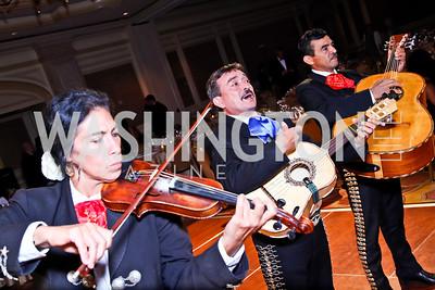 The 34th Annual Ambassadors Ball. Photo by Tony Powell. Ritz Carlton. September 12, 2012