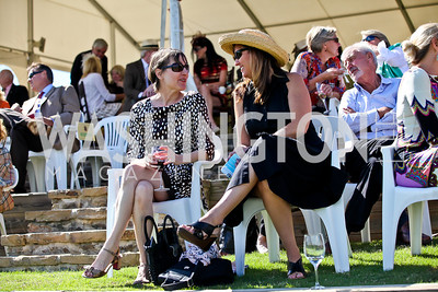 Photo by Tony Powell. NSLM 2012 Benefit Polo Match and Luncheon. Llangollen Estate. September 23, 2012