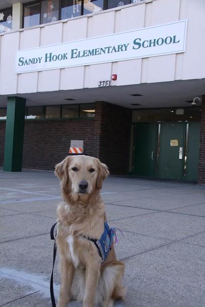 Sandy Hook Elementary School Mass Shooting