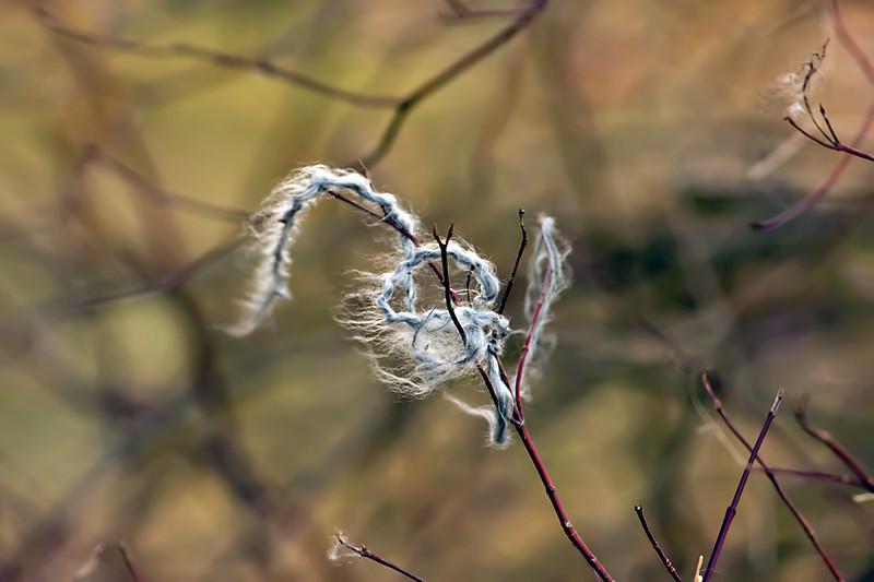 Thread-01-04-01
