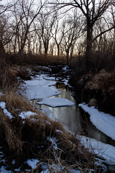 Day 48 - 17 February 2012<br /> Our snow is melting and we are starting to see flowing streams again.