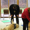 LCMS New England District President Rev. Timothy Yeadon petting K-9 Comfort Dog Prince at Christ the King Lutheran Church, Newtown, Connecticut.