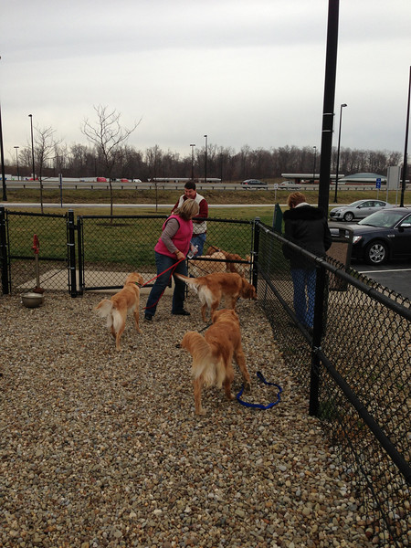 It's always wonderful when you find a dog park along the way!