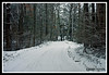 Country Road-01-31-04cr