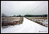 Country Road-01-31-05cr