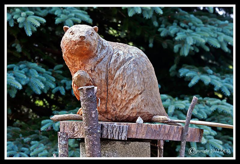 Beaver-06-11-02cr