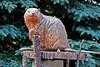 Beaver-06-11-02