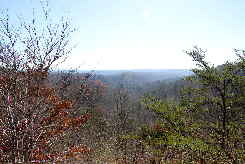 Cumberland Falls-8428