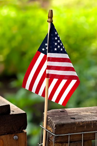 American Flag-07-04-01