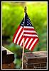 American Flag-07-04-01cr