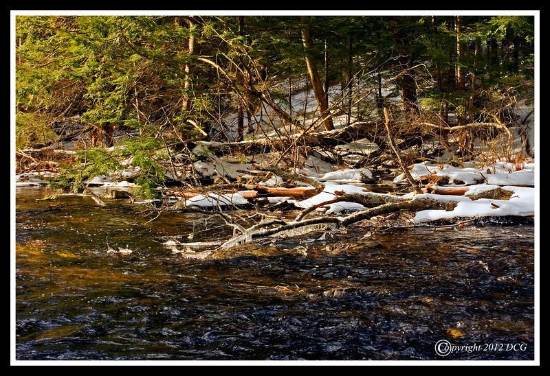 Big River-01-30-09cr