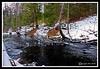 Big River-01-30-07cr
