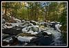 Big River-01-30-24cr