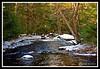 Big River-01-30-11cr