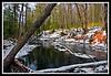 Big River-01-30-05cr